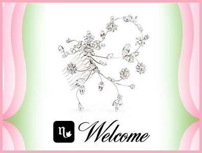 welcome_tiara_blog